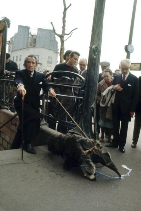 Con su oso hormiguero por París