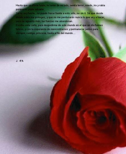 Captura de pantalla 2013-02-13 a las 20.35.57