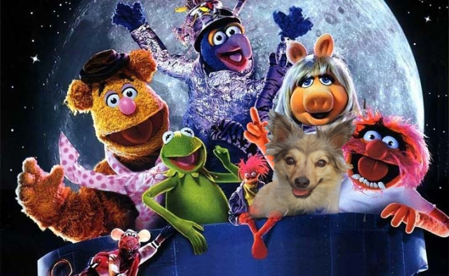 DisneyMuppets-001 copy