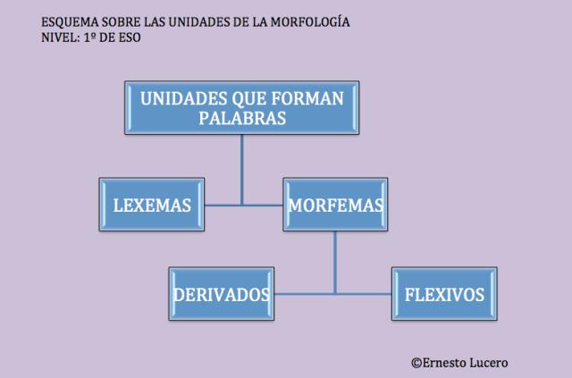 Unidades morfológicas